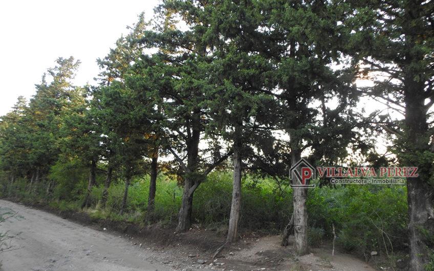 LOTES EN VILLA ELENA, CORTADERAS