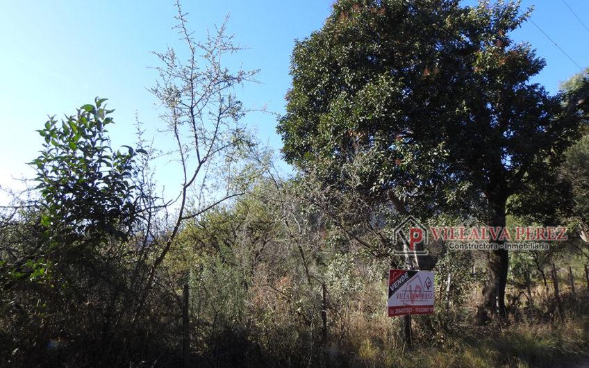 LOTES EN LOMA COLORADA CORTADERAS